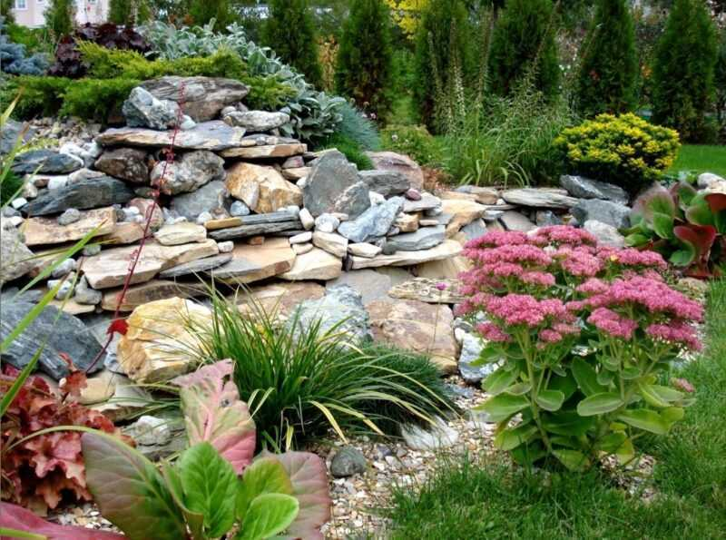 Rock garden: the best device diagrams and an example of how to create it yourself