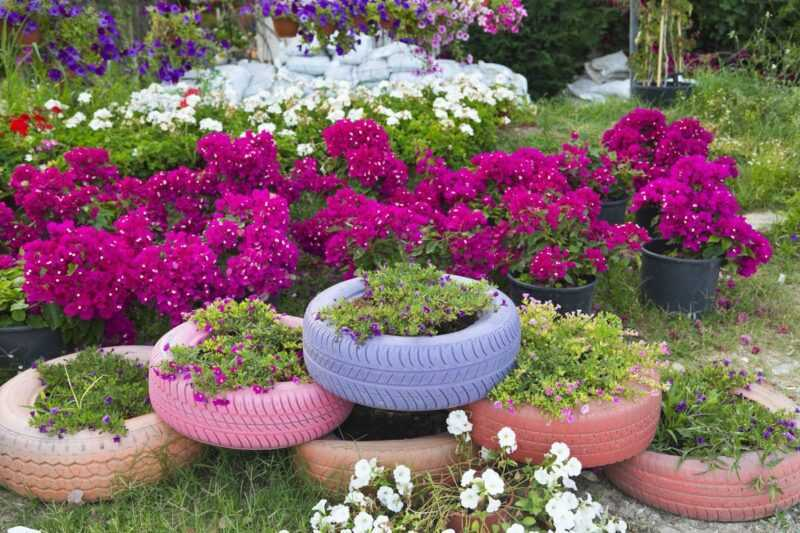 Flowerbeds of tires or how to make a masterpiece from an old wheel with your own hands