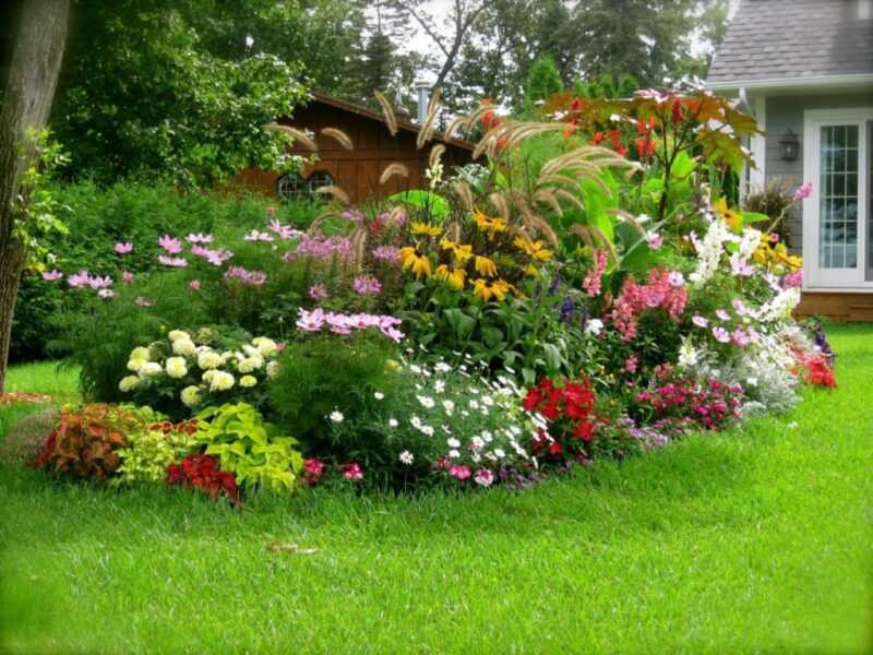 The most beautiful flower beds in the country, made by hand: photo selection