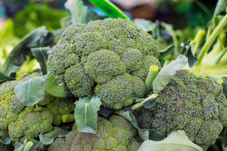 Broccoli benefits and harms