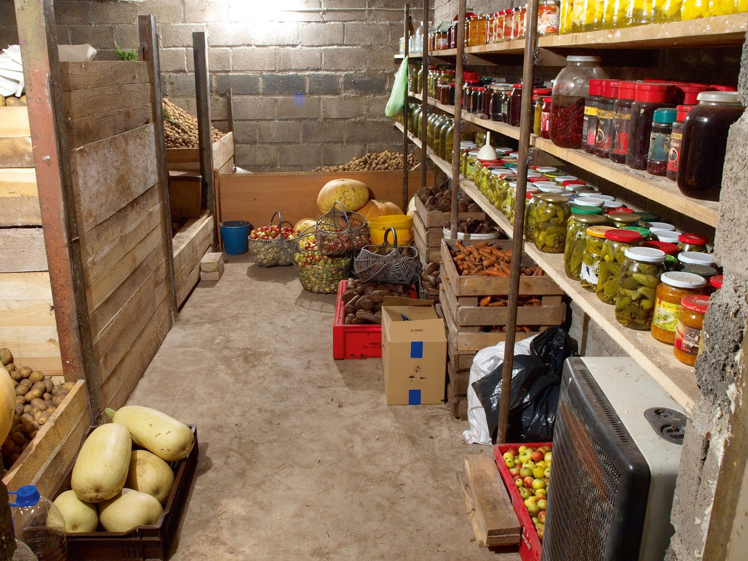 Delicious, equipped basement