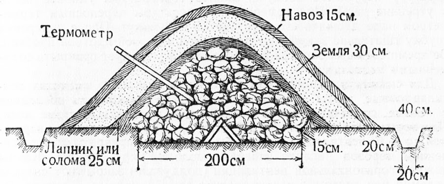 The construction of the pile