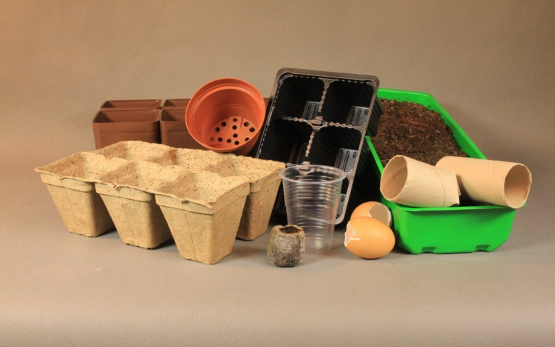 planting containers for seedlings