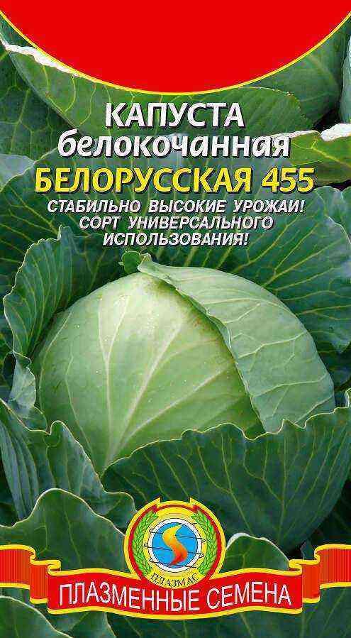 Belarusian cabbage 455: description and characteristics