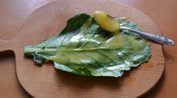 Cabbage leaf - a recipe for successfully getting rid of bumps after injections