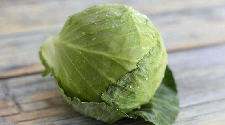 Cabbage leaf is a popular answer for many troubles