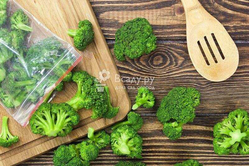 How to freeze broccoli at home to preserve the benefits