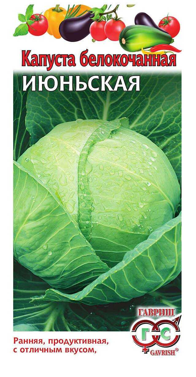 June cabbage: characteristics and description of the variety