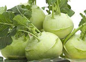 Kohlrabi cabbage: its composition and useful properties, photo