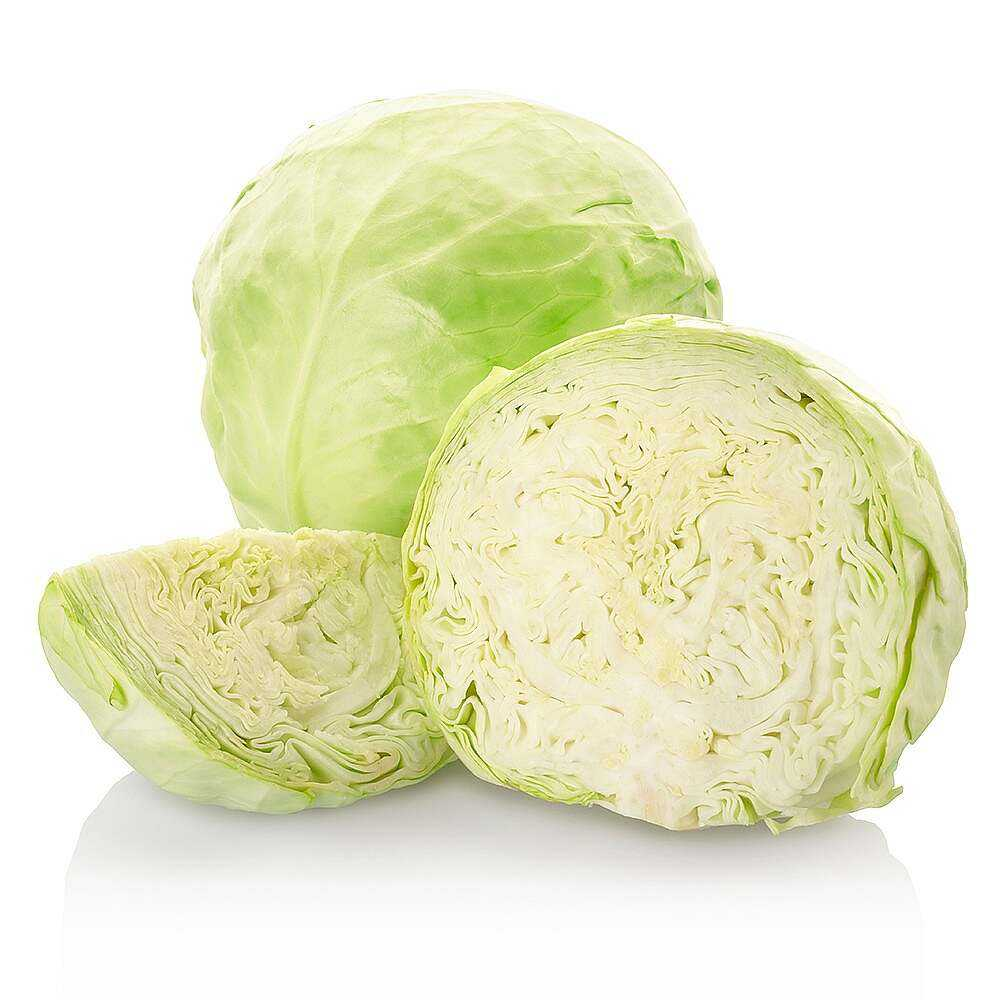 White cabbage: varieties, seedlings and cultivation